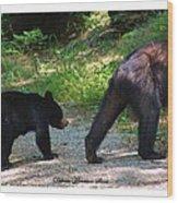 Cub Following Mom Wood Print