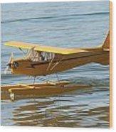 Cub On Floats Wood Print