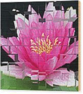 Cubed Lily Wood Print