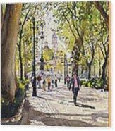 Cuesta Genil Wood Print by Margaret Merry