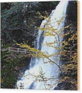 Cullasaja's Dry Falls Wood Print