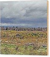 Culloden Moor Wood Print