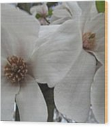 Cultivar Double Magnolia Blossoms Wood Print
