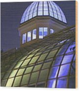 Cupola At Night Wood Print