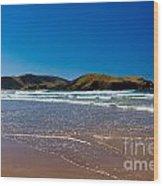 Curio Bay On South Coast Of New Zealand South Island Wood Print