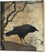 Curious Crow Wood Print