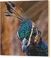 Curious Peacock Digital Art Wood Print