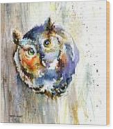 Curious Screech Owl Wood Print