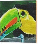 Curious Toucan Wood Print by Laura Charlesworth