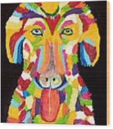 Curly Colorful Retriever Wood Print