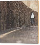 Curved Perspective Wood Print