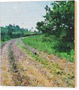 Curved Road Painting Wood Print