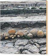 Cushion Bush Dam Wood Print