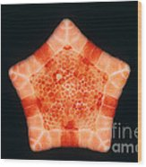 Cushion Star Wood Print