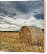 Cut Field Wood Print by Jane Rix