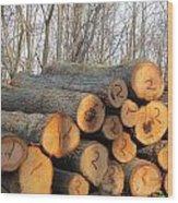 Cut Logs Wood Print