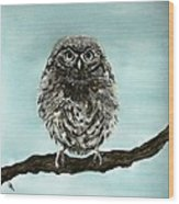 Cute Baby Owl Wood Print