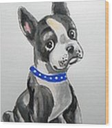 Boston Terrier Wall Art Wood Print