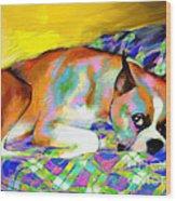 Cute Boxer Dog Portrait Painting Wood Print by Svetlana Novikova