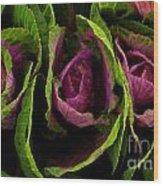 Cute Cabbage Wood Print