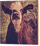 Cute Calf Grunge Wood Print by Cassie Peters