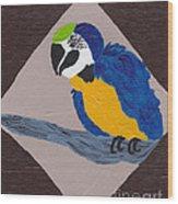 Cute Little Macaw  Wood Print