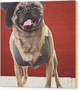 Cute Pug Dog In Vest And Top Hat Wood Print