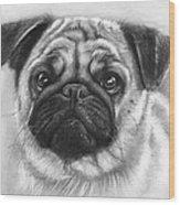 Cute Pug Wood Print by Olga Shvartsur