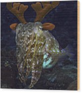 Cuttlefish With Reindeer Hat Wood Print