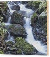 Cwm Gwaun Waterfall Wood Print