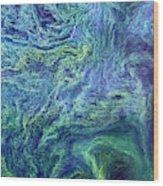Cyanobacteria Bloom Wood Print
