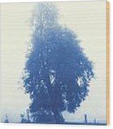 Cyanotype Cemetery Wood Print