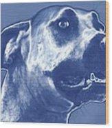 Cyanotype Dog Wood Print