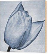 Cyanotype Tulip Wood Print