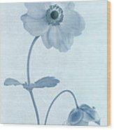 Cyanotype Windflowers Wood Print