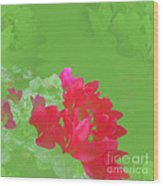 Cyclamen Dream Wood Print