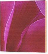 Cyclamen II Wood Print