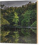 Cypress At Dusk Wood Print