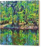 Cypress Coast Wood Print