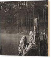 Cypress Knees In Sepia Wood Print