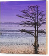 Cypress Purple Sky 2 Wood Print