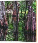 Cypress Secrets Wood Print