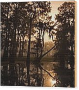 Cypress Sunrise Wood Print