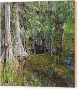 Cypress Trees 4021 Wood Print