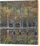 Cypress Tree Fall Reflections Wood Print