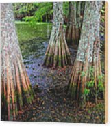 Cypress Waltz Wood Print by Karen Wiles
