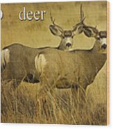 D Is For Deer Wood Print