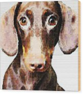 Dachshund Art - Roxie Doxie Wood Print