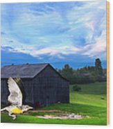 Dad's Favorite Bird Meadowlark Wood Print