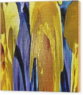 Daffodil Abstract Wood Print